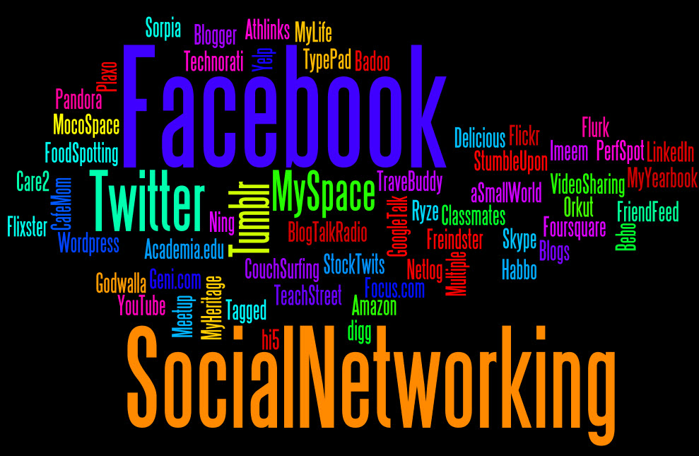 social network Definition of social network: family, and friends and their families, that together create an interconnected system through which alliances are formed.